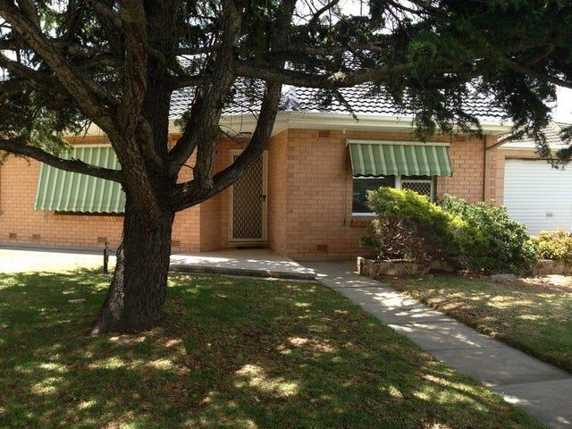 1/16 Sandison Terrace, Glenelg North, SA 5045