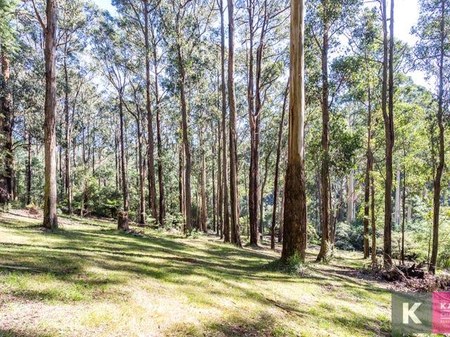 16 Lisheen Road, Cockatoo, Vic 3781