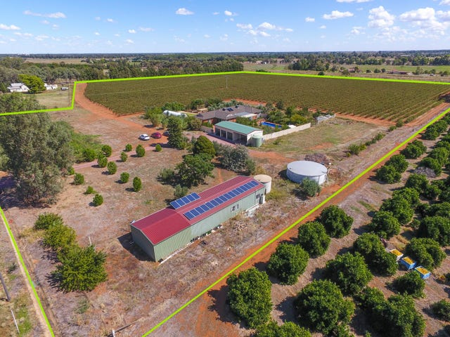 374 Stringer Rd, Leeton, NSW 2705