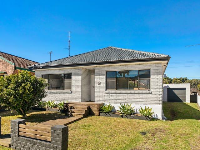 25  Crawford Avenue, Gwynneville, NSW 2500