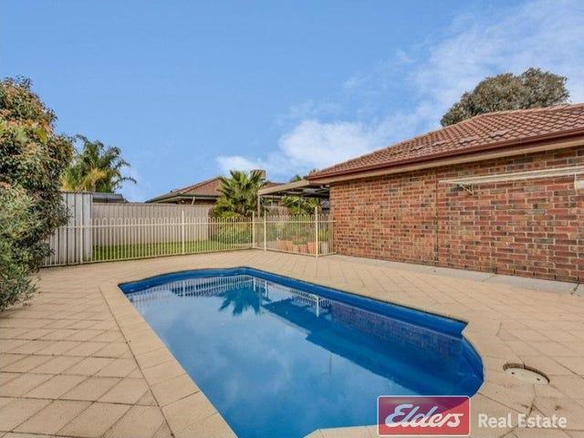 35 Lovelock Road, Parafield Gardens, SA 5107