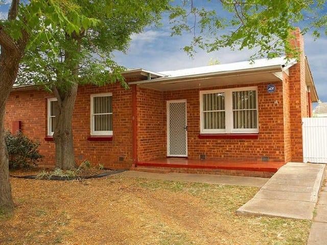 41 Wilkins Road, Elizabeth Downs, SA 5113