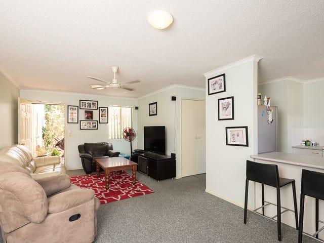 Apartments & Units For Sale in Sunshine Coast, Hinterland - Region ...