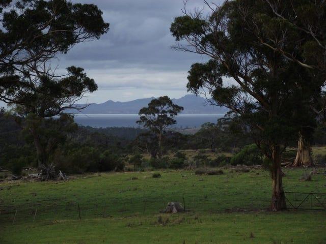 . Bresnehans Road, Little Swanport, Tas 7190