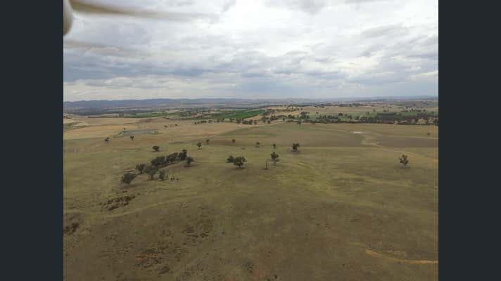 Ascot Mundarlo via Gundagai Mundarlo NSW 2729 - Image 19