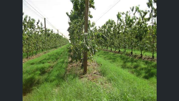 Sold Commercial Farming & Rural Property at Chappell