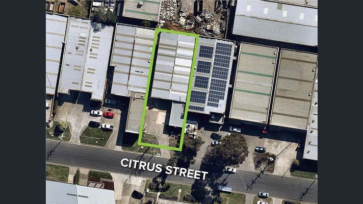 13 Citrus Street Braeside VIC 3195 - Image 1