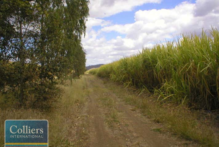 * Freeman Road Clare QLD 4807 - Image 1