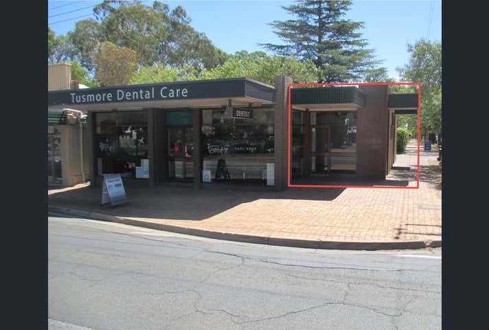 481 Greenhill Road Tusmore SA 5065 - Image 1