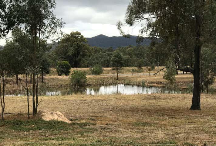 Broke NSW 2330 - Image 1