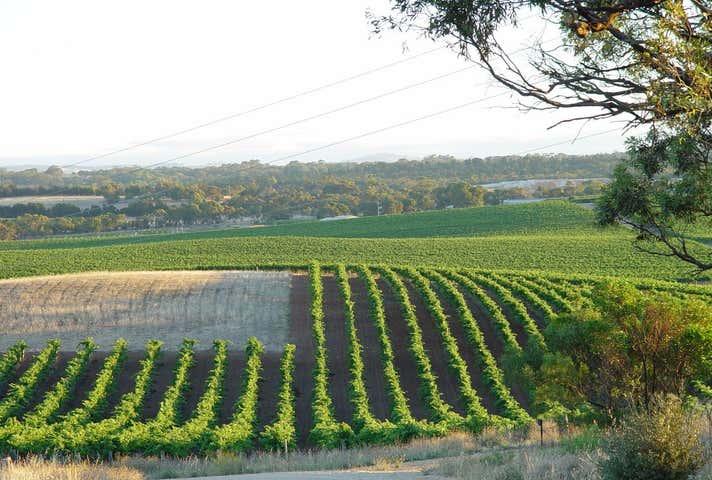 344 Rosedale Scenic Road Rosedale SA 5350 - Image 1