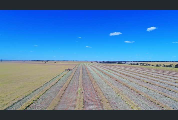 Tooleybuc NSW 2736 - Image 1