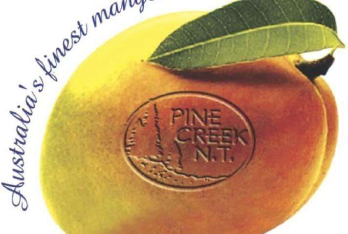 Pine Creek NT 0847 - Image 1