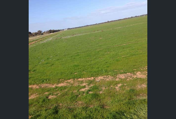 Industrial Land, Lot 590 Hillside Road Moama NSW 2731 - Image 1