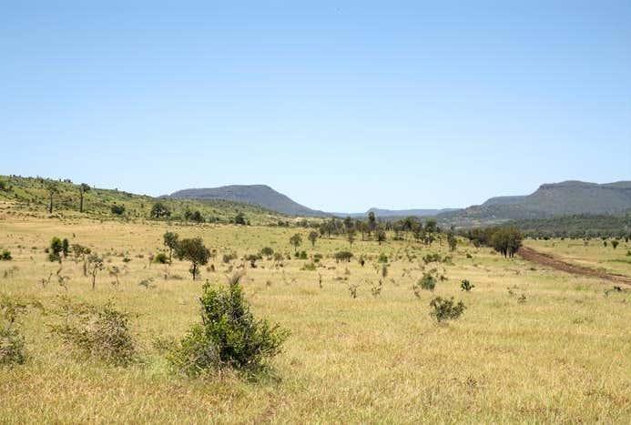 The Outstation  Wealwandangie Road Springsure QLD 4722 - Image 1