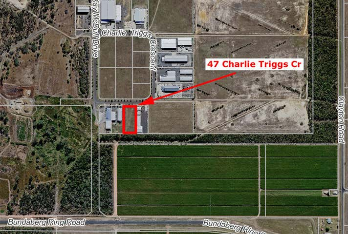 47 Charlie Triggs Cresent Kensington QLD 4670 - Image 1