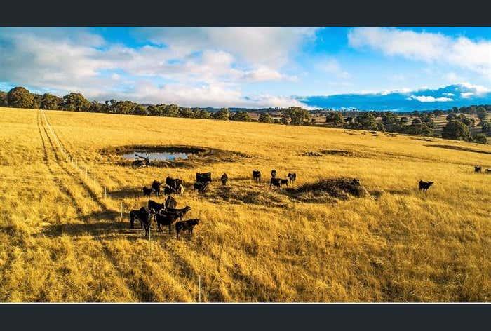 'Glendon Park' Tullock Road Armidale NSW 2350 - Image 1