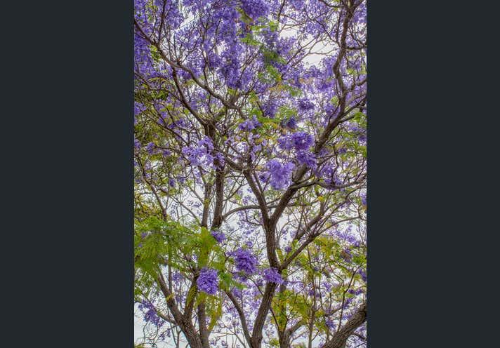 26 Middle St Chinchilla QLD 4413 - Image 12