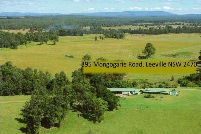 395 Mongogarie Road Leeville NSW 2470 - Image 2