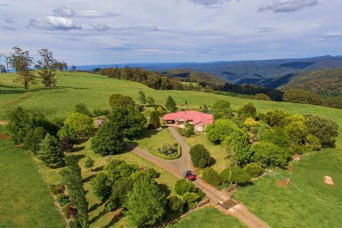 80 Myrtle Scrub Scenic Drive, Yarrowitch Walcha NSW 2354 - Image 1