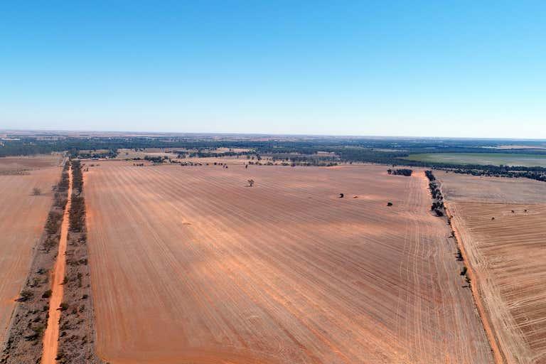 Tooleybuc NSW 2736 - Image 4