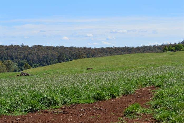 80 Myrtle Scrub Scenic Drive, Yarrowitch Walcha NSW 2354 - Image 4