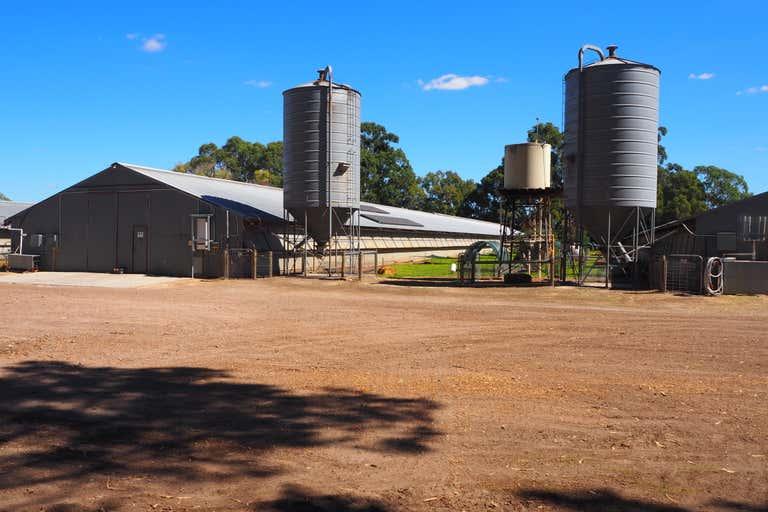 Broiler Farm, 12 Tunney Rd Oldbury WA 6121 - Image 2