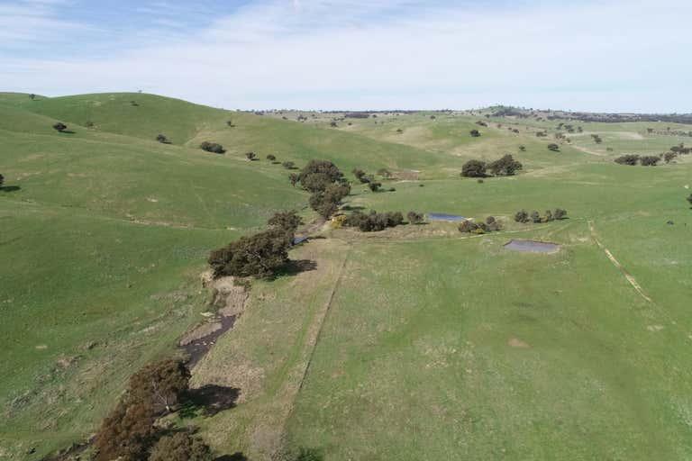 53 Lawrence Lane Yass NSW 2582 - Image 1