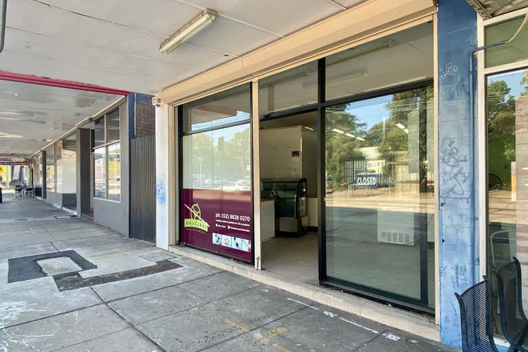 13 Brodie Street Rydalmere NSW 2116 - Image 1
