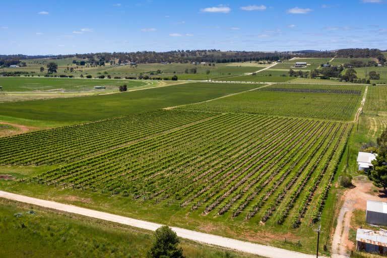 Stanley Flat & Noble Road Vineyards, Section 454 Horrocks Highway Stanley Flat SA 5453 - Image 2