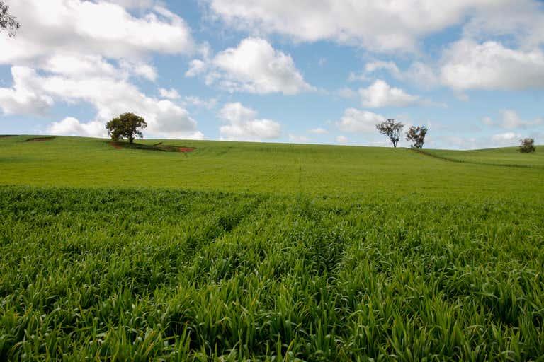 1085 Berthong Road Berthong NSW 2594 - Image 3