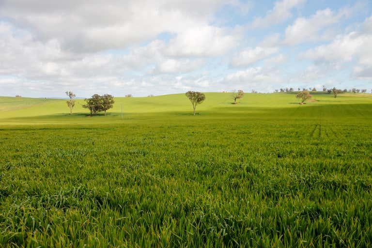1085 Berthong Road Berthong NSW 2594 - Image 4