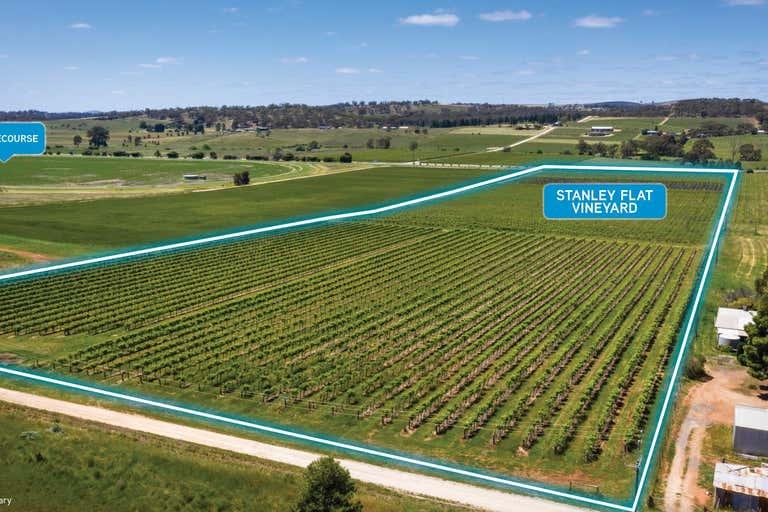 Stanley Flat & Noble Road Vineyards, Section 454 Horrocks Highway Stanley Flat SA 5453 - Image 1