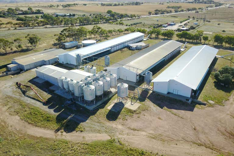 1036 Geraldton Mount Magnet Road Moonyoonooka WA 6532 - Image 2
