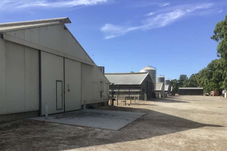 Broiler Farm, 12 Tunney Rd Oldbury WA 6121 - Image 3