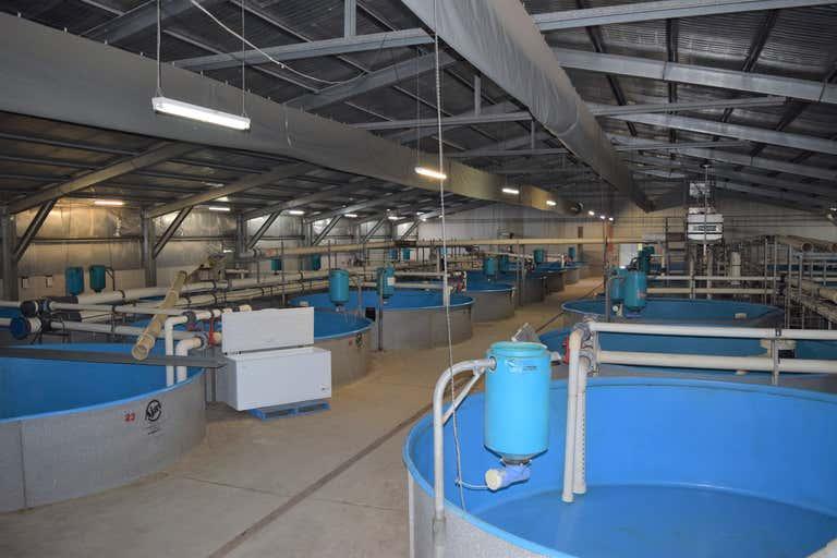 422 Tiyces Lane Boxers Creek NSW 2580 - Image 3