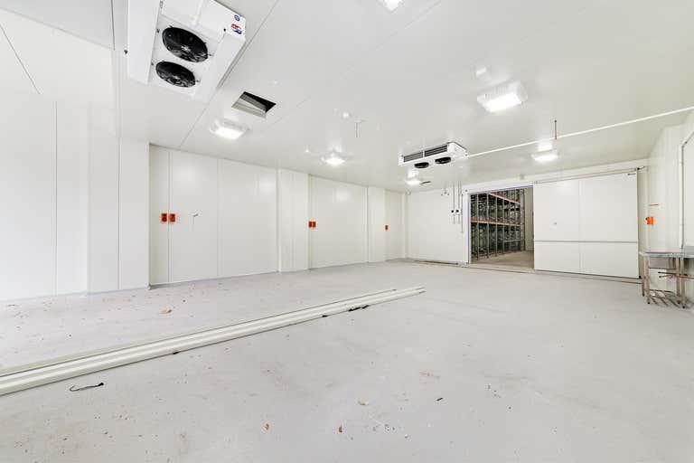 21 Sloane Street Marrickville NSW 2204 - Image 2