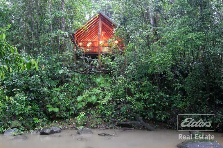 The Canopy, 247 Hogan Road Tarzali QLD 4885 - Image 1