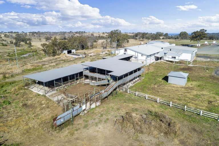 168 Boundary Road Pittsworth QLD 4356 - Image 4