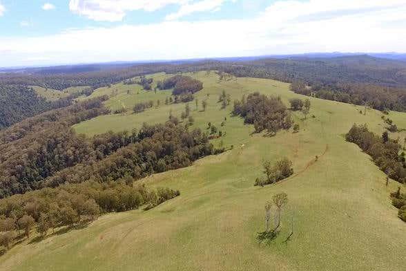80 Myrtle Scrub Scenic Drive, Yarrowitch Walcha NSW 2354 - Image 2