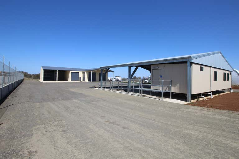12 Hillman Street Torrington QLD 4350 - Image 2