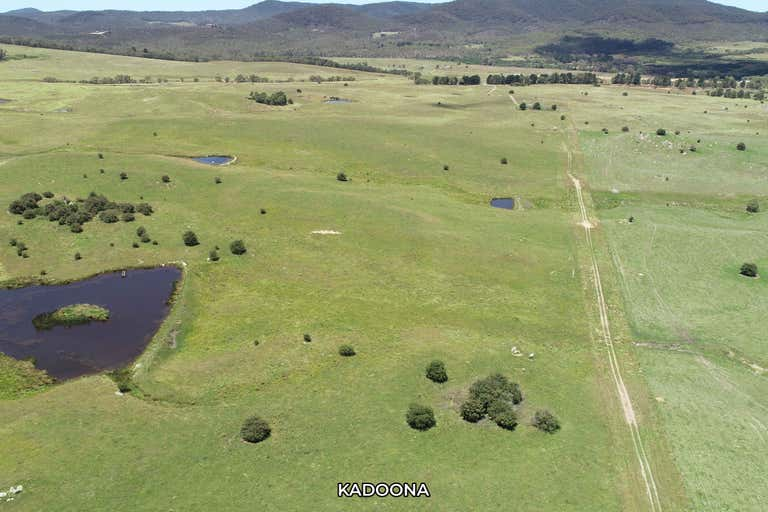 Cooma Road Braidwood NSW 2622 - Image 1