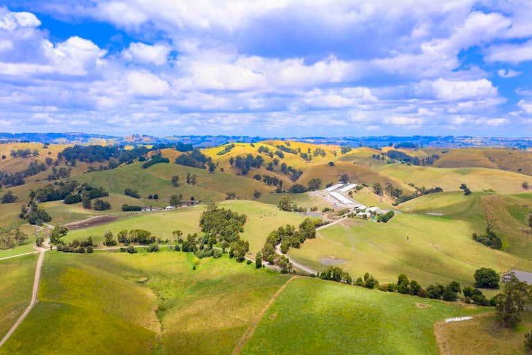Mountain View Farm, 641 Mountain View–McDonalds Track Mountain View VIC 3988 - Image 1