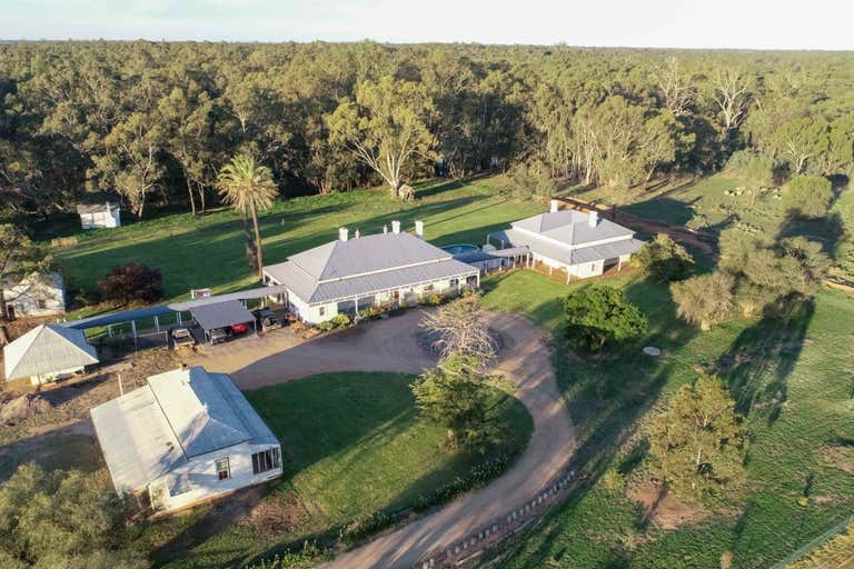 14070 Sturt Highway Darlington Point NSW 2706 - Image 2