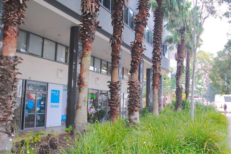 251/813 Pacific Highway Chatswood NSW 2067 - Image 2