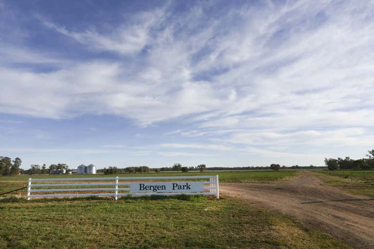 BERGEN PARK & WARILI - Image 1