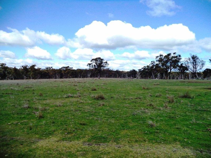 1015 Bundarra Rd 'Zahlee', Barraba, NSW 2347