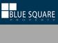 Blue Square Property